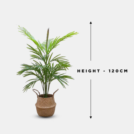 Artificial Plants with seagrass